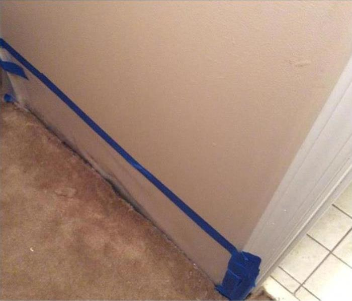 Mold Remediation In Palisade After