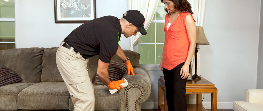 Grand Junction, CO carpet upholstery cleaning